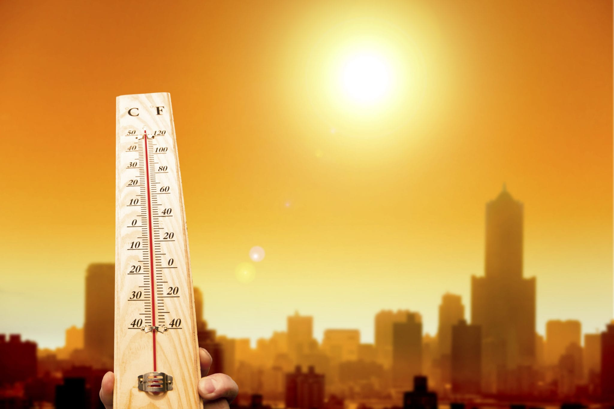 Causas-por-las-que-hay-mas-calor-en-la-ciudad-que-en-el-campo-1